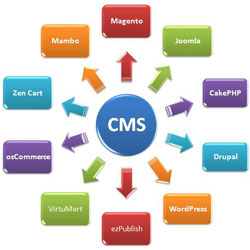 Content Management System, CMS Development delhi, Content Management